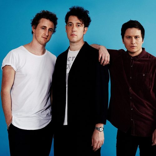 The-Wombats1